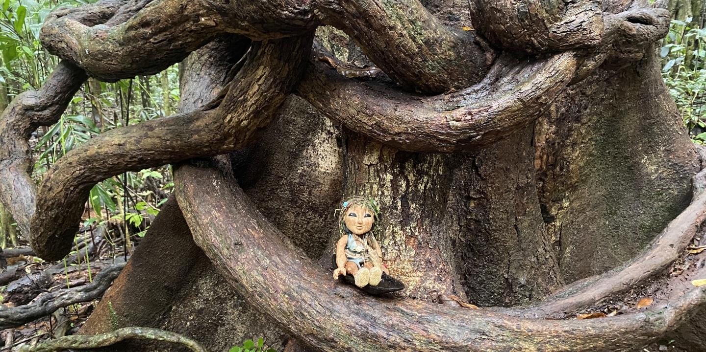 The-Cedar-Rose-WEB-photo-by-Rebecca-Dostal-2to1-oBizGx.tmp_